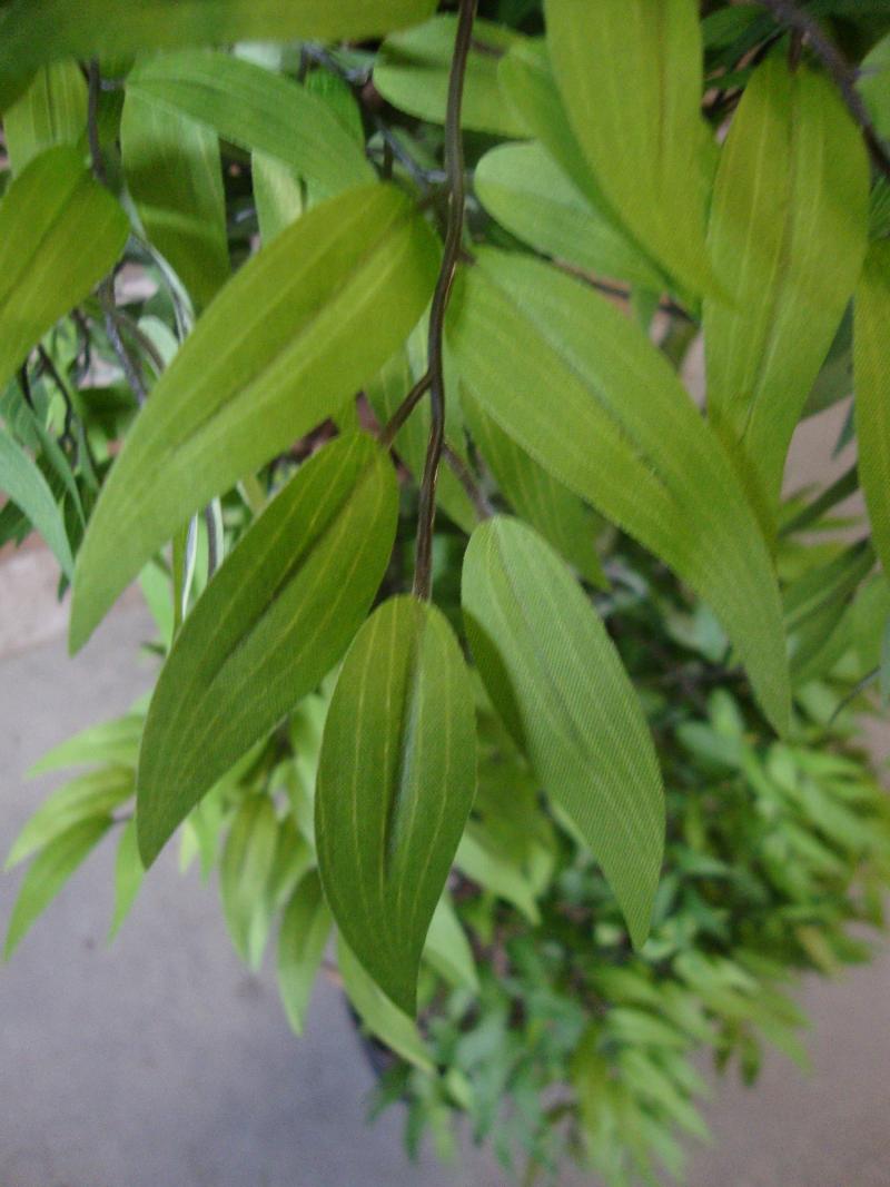 Groene Kunst-Fruticosa dubbele kruin 165cm - bladdetail