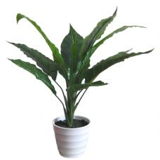 Kunstplantje Velvet 50cm