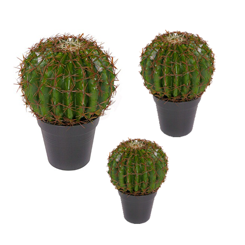 kunstbol cactus set