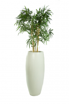 Vaas Blanke Kunst-Bamboe 170cm