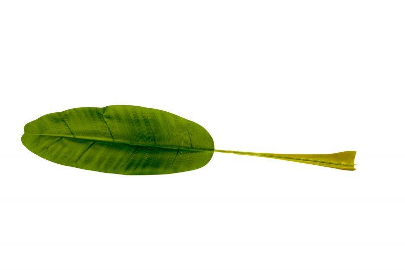 kunstbananenblad 50cm