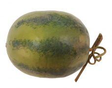 Namaak Water Meloen