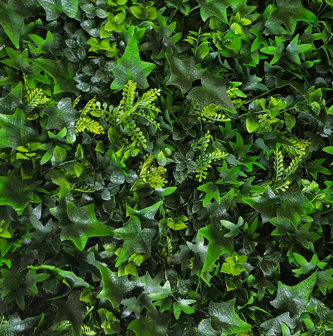Mix Haag Groen