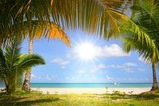 Tropical Beach Wandzeil