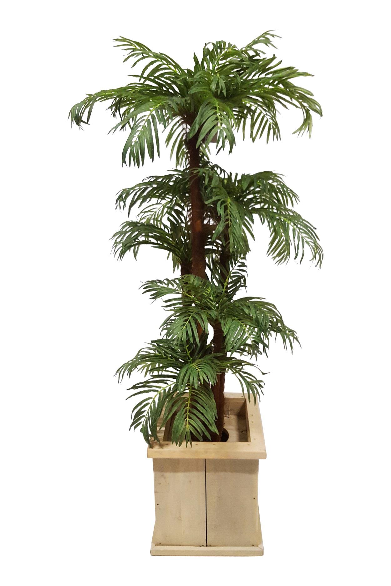 Verhuur Kokospalm in Lage Pot H 190cm