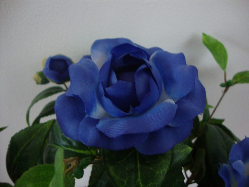 Kunst-Azalea Blauw 40cm