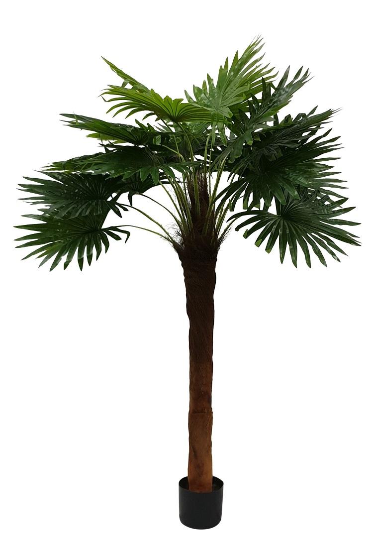 Namaak Waaierpalm Florida 155cm
