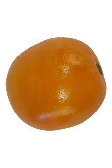 Namaak Sinaasappel