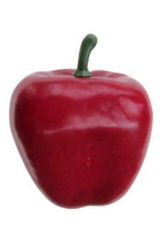 Rode Kunstpaprika 10cm