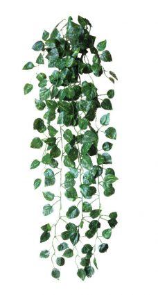 hangplant steker