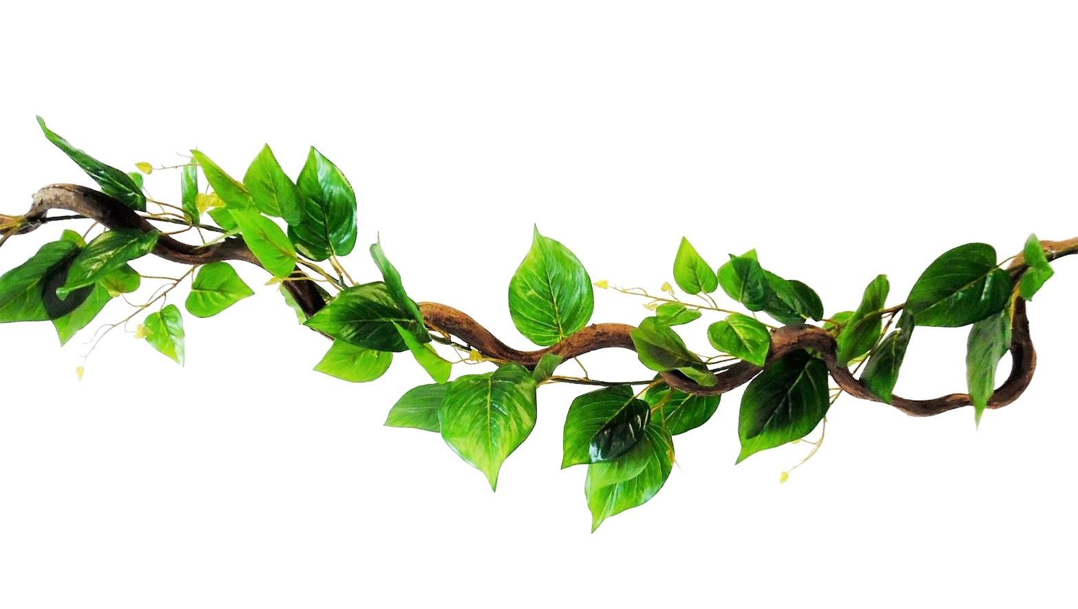 Kronkel Liaan met Groene Bladeren 115cm