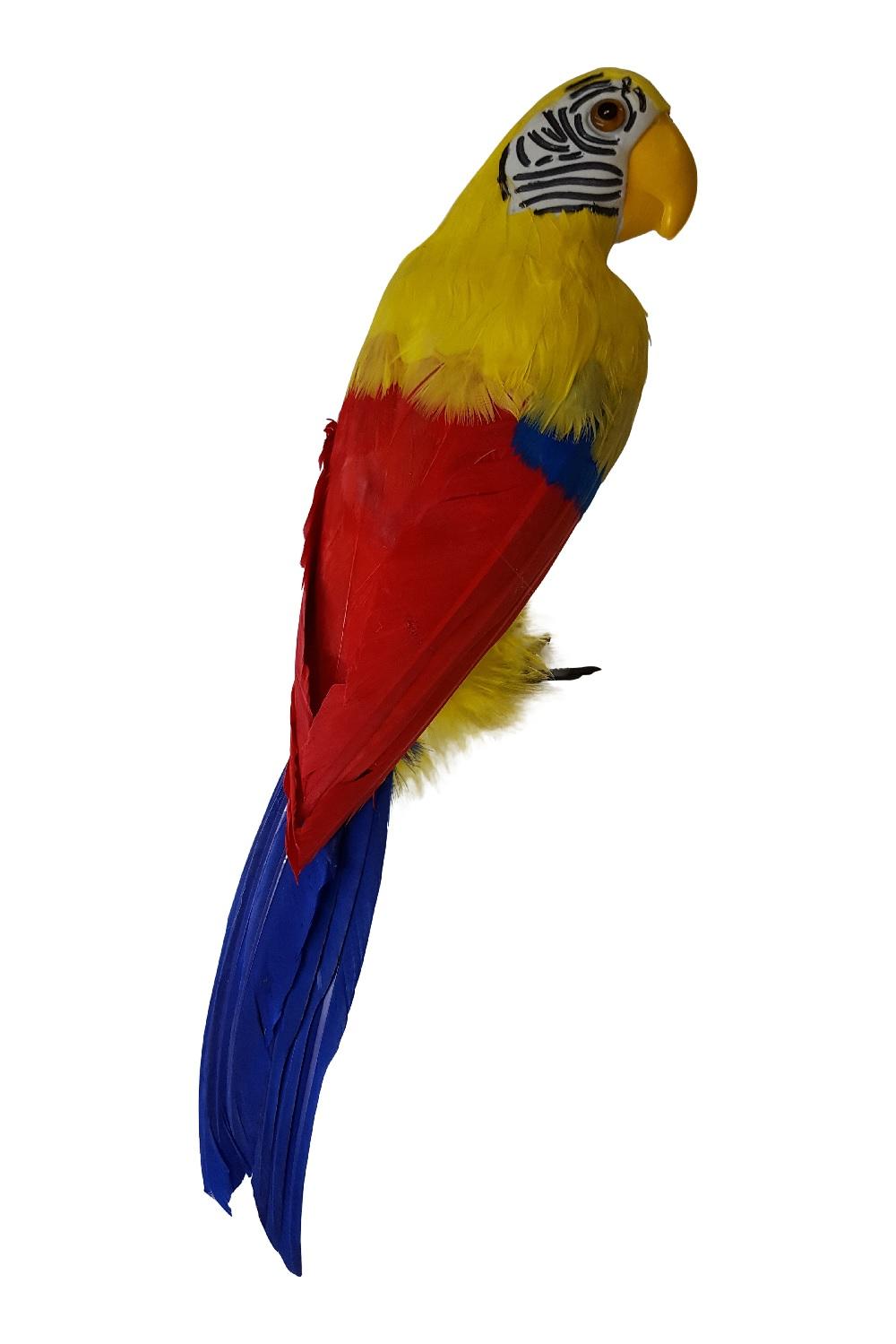 kleurrijke papegaai 44 cm natuurlijk te koop bij. Black Bedroom Furniture Sets. Home Design Ideas