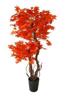 Kunst Esdoorn Dubbele Kruin Oranje Rood 165cm