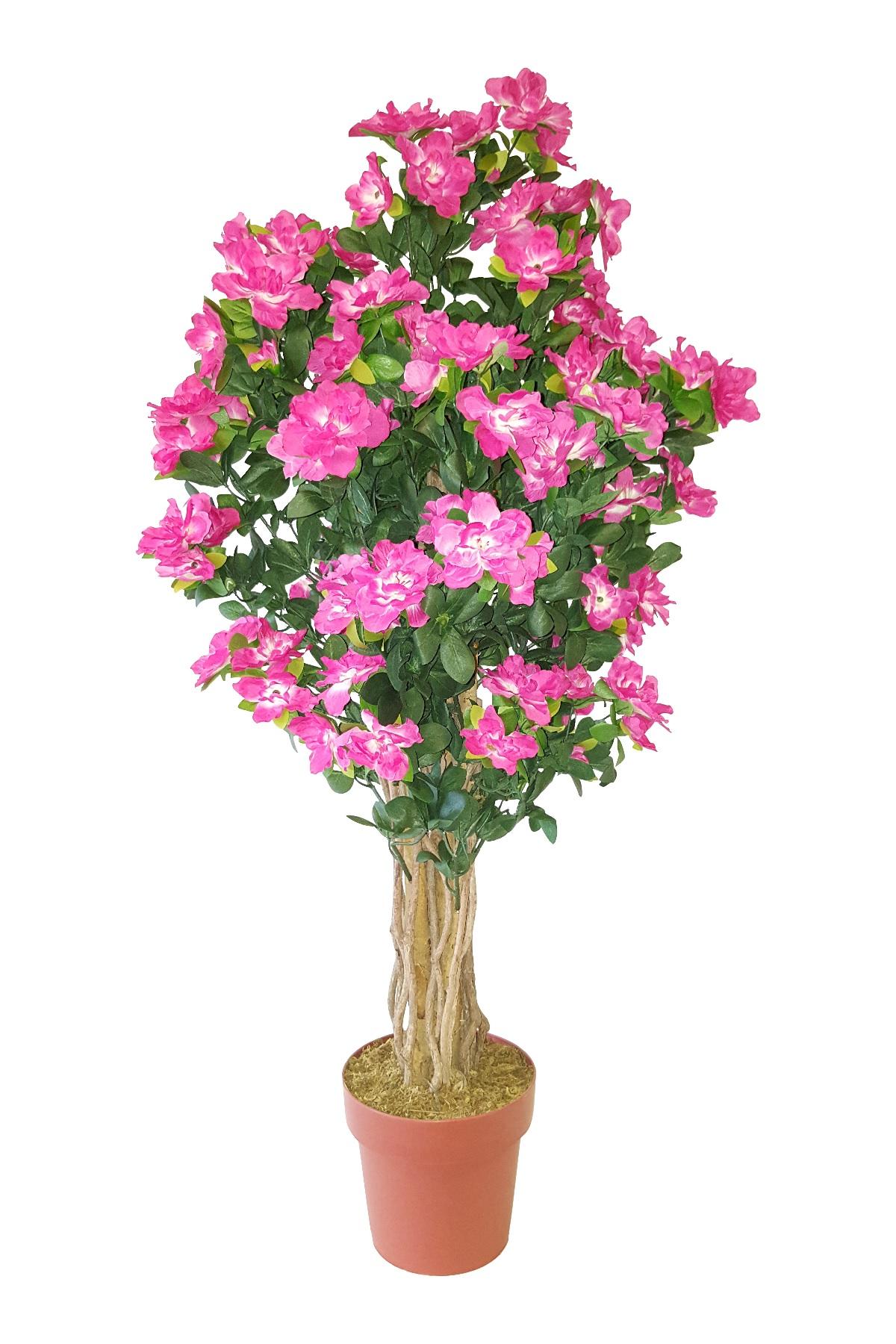 Stamheester met Roze Bloemen 115cm