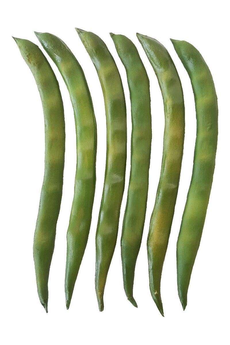 Namaak Snijbonen Groen 24cm