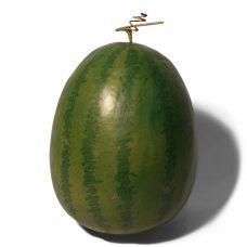XL Kunst Water Meloen 30cm