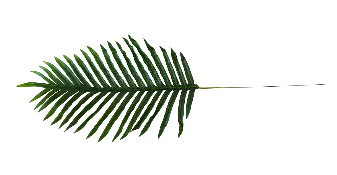 Nep Palmblad 35cm