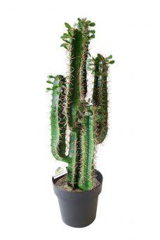Namaak Cactus Osaka 76cm