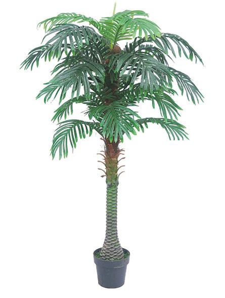 Palmboom Bora Bora 160cm