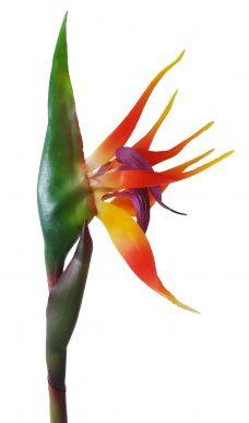 Kunst Paradijsvogelbloem 80cm