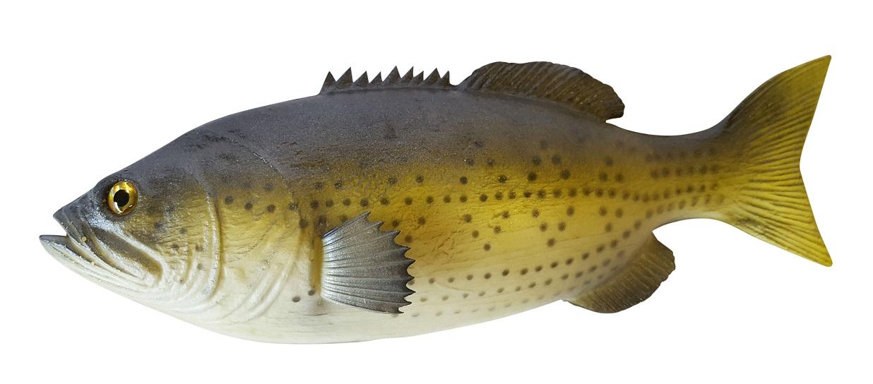 Namaak Regenboog Forel 29cm