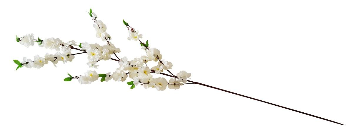 Japanse Bloesemtak Wit 120cm