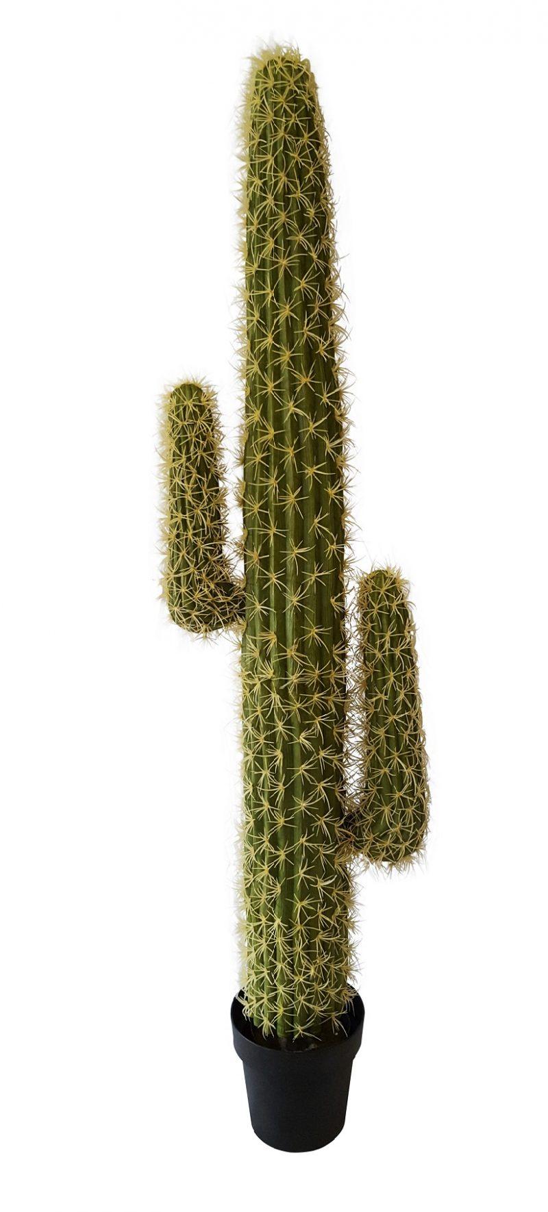 Namaak Cactus Nagano 145cm
