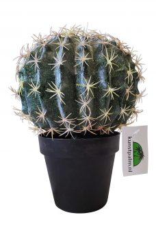 Kunst Cactusbol met Pot 26cm
