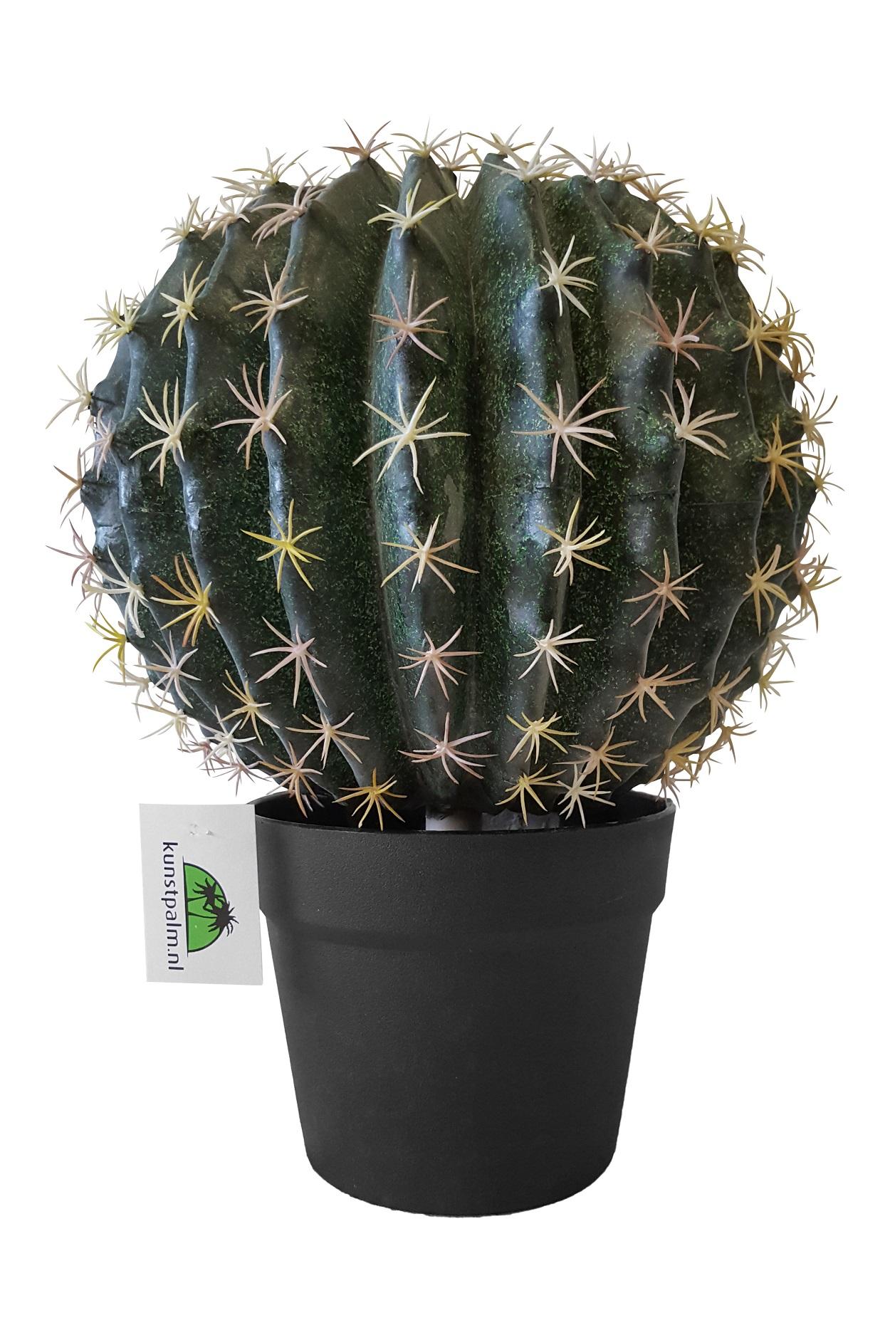 Kunst Cactusbol met Pot 35cm