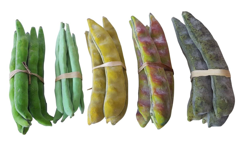 Namaak Bonen Serie 27 stuks 15cm