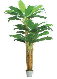 XL Banaanboom Set 400cm