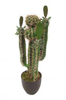 Kunst Cactus Kioto 70cm