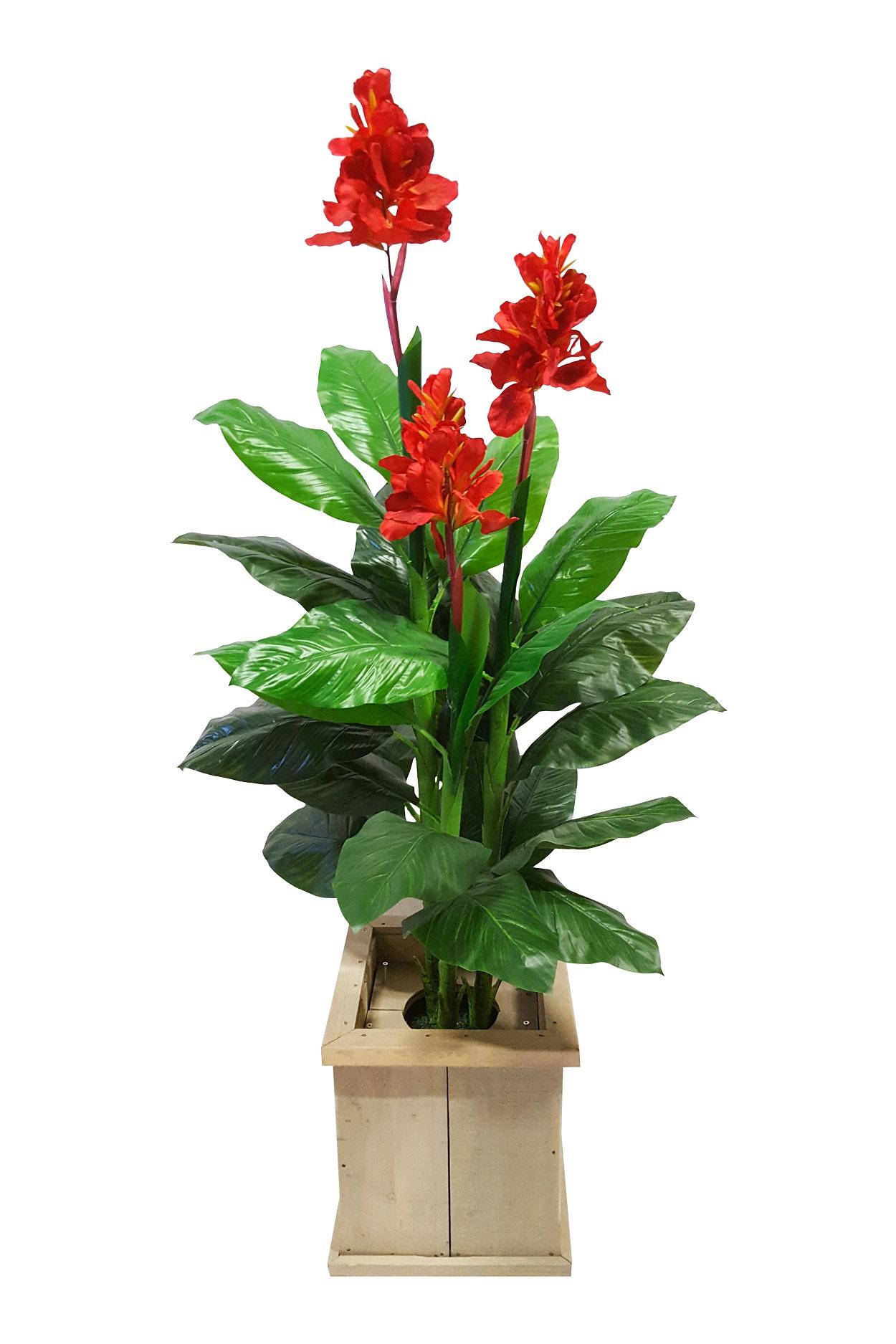 Rode Verhuur Bloemplant in Bak 180cm