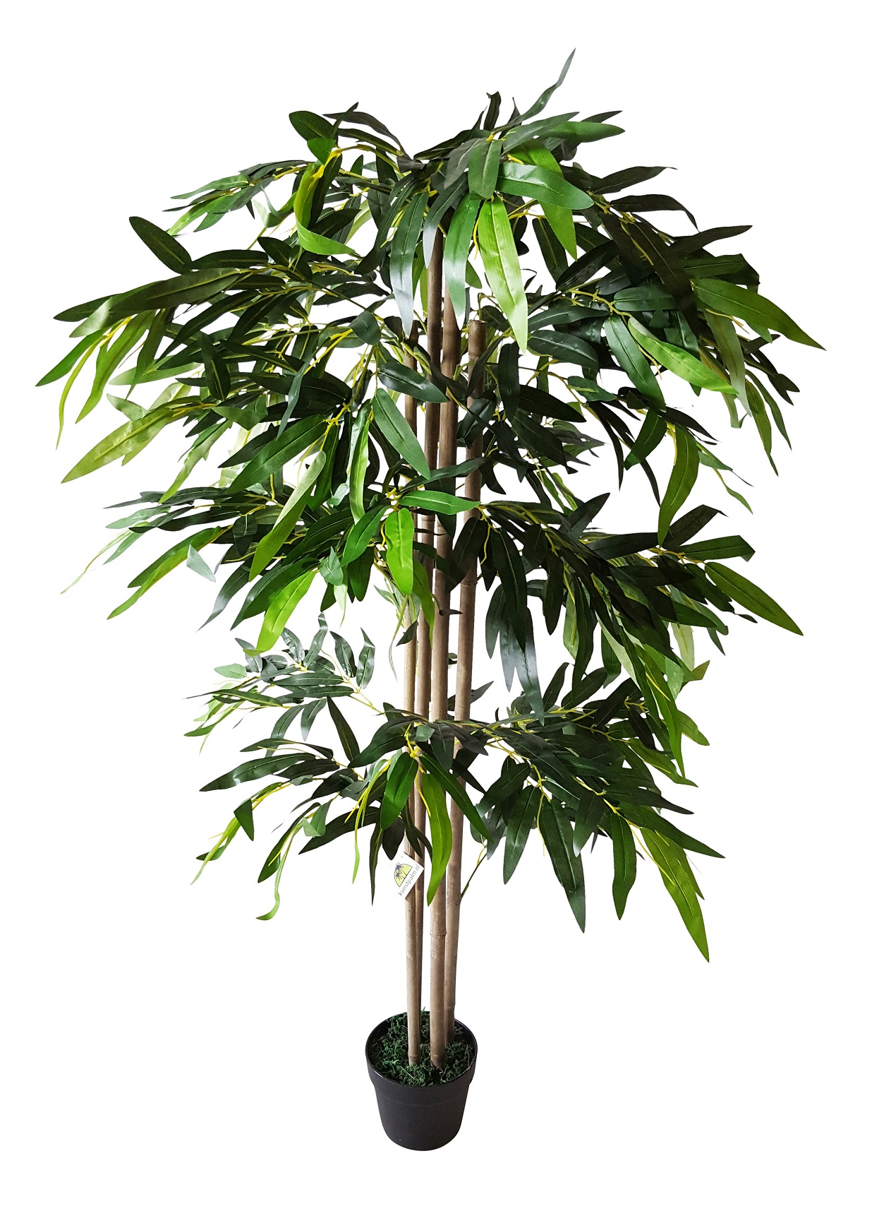 Breedblad Budget Bamboe 140cm