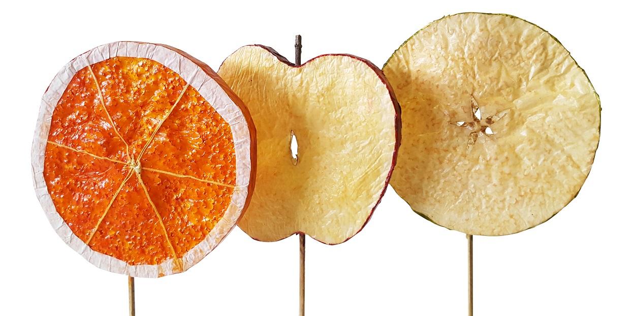Deco Fruit Schijven Prikkers Middel 3x