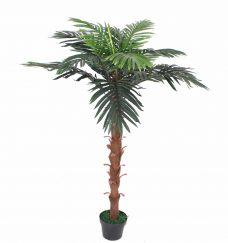 Palmboomje met Pot 140cm