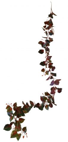 Redback Liaan 220cm