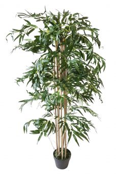 Smalblad Budget Bamboe 140cm