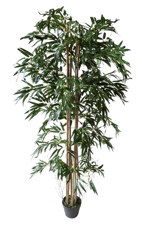 Smalblad Budget Bamboe 175cm