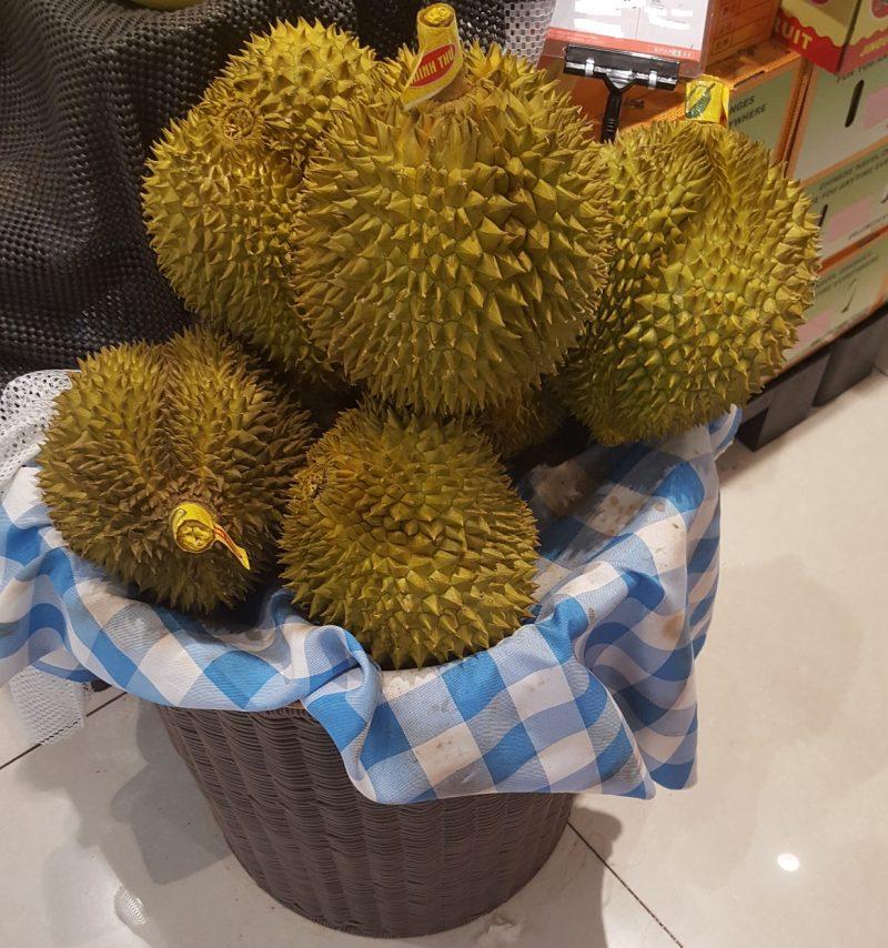 Namaak Durian 25cm