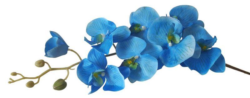 Kunst Orchidee Bloem Blauw 100cm