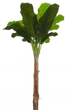 Namaak Banaanboom 260cm
