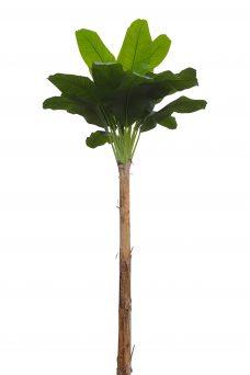 Namaak Bananenboom Middelgroot 340cm