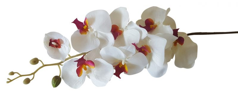 Witte Kunst Orchidee Bloem 100cm