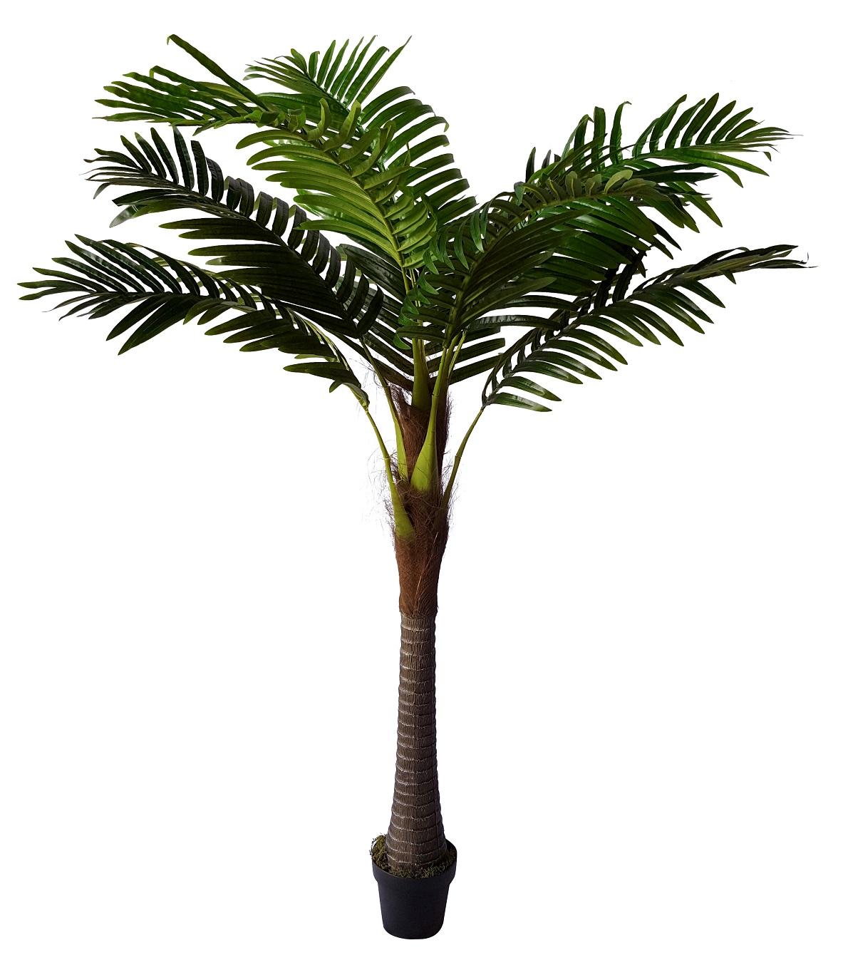 Kleine Kunst Kokospalm Domingo 185cm