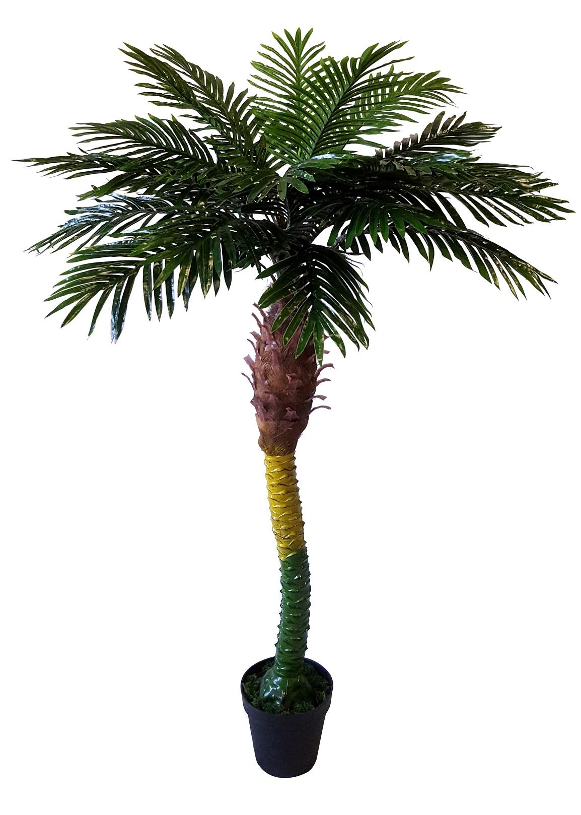 Kunst Phoenixpalm Florida 175cm