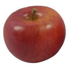 Rode Namaak Appel