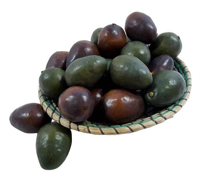 Namaak Avocado Bruin 9cm