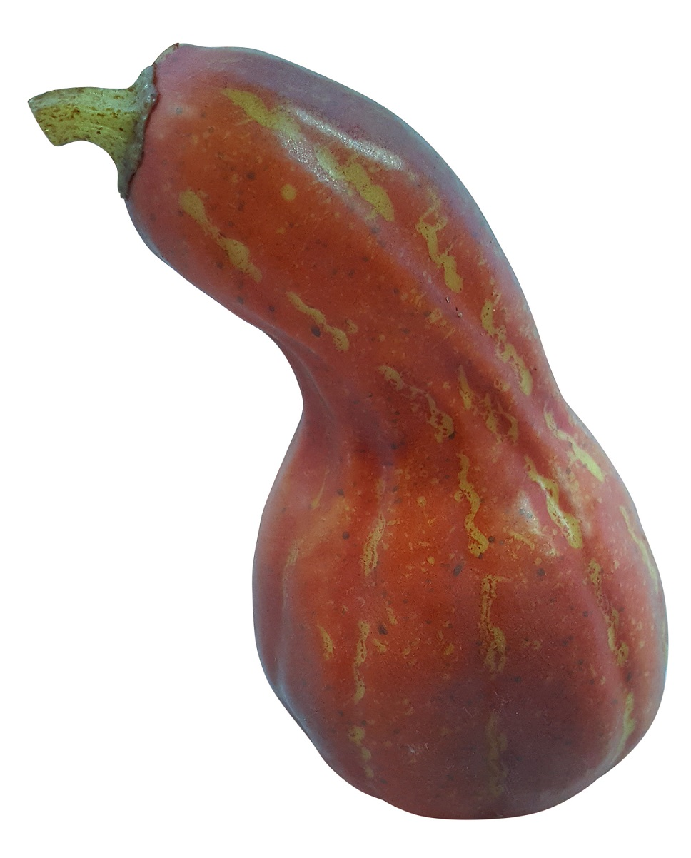 Oranje Namaak Sierkalebas 17cm