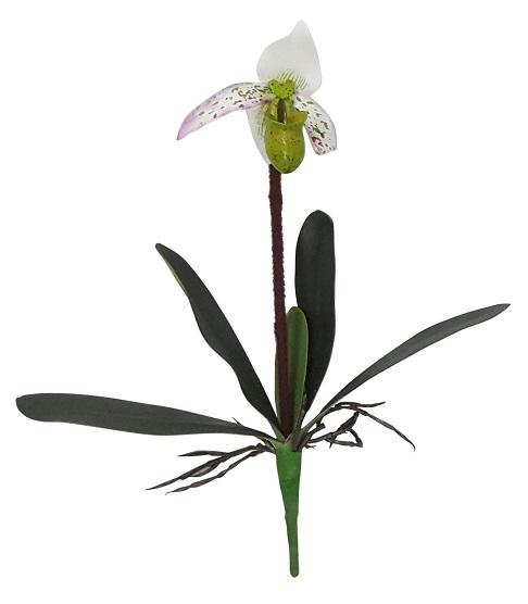 Kelk Orchidee Wit 40cm